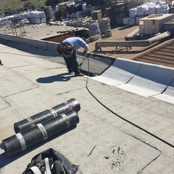 Roof Repair in Los Angeles, CA